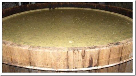 bourbon fermenting