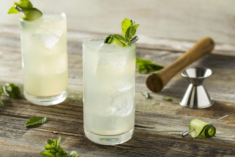 Gin Fizz Cocktail Highball