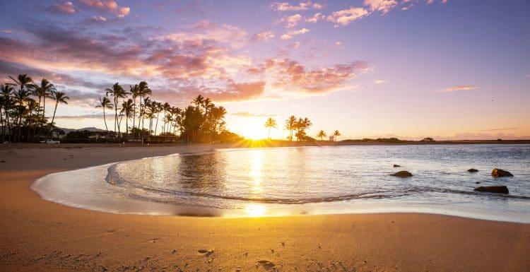 Hawaiian Beach Tiki